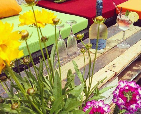 Alpine Flowers Surround Our Terraces