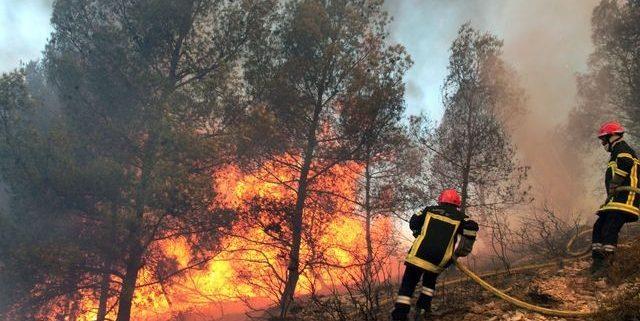 Chamonix Wild Fire
