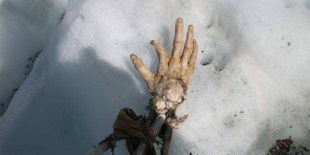 Air India Mont Blanc Crash Hand Found